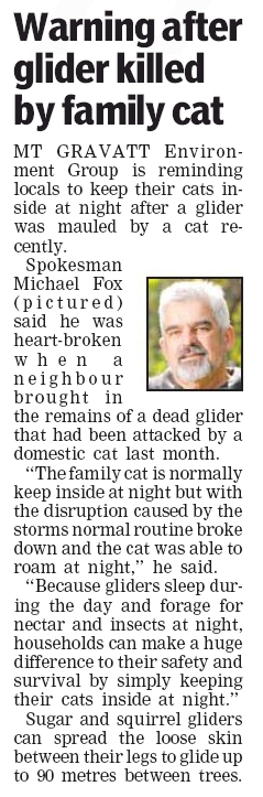 Glider cat attack - Souther Star - 20 Feb 13