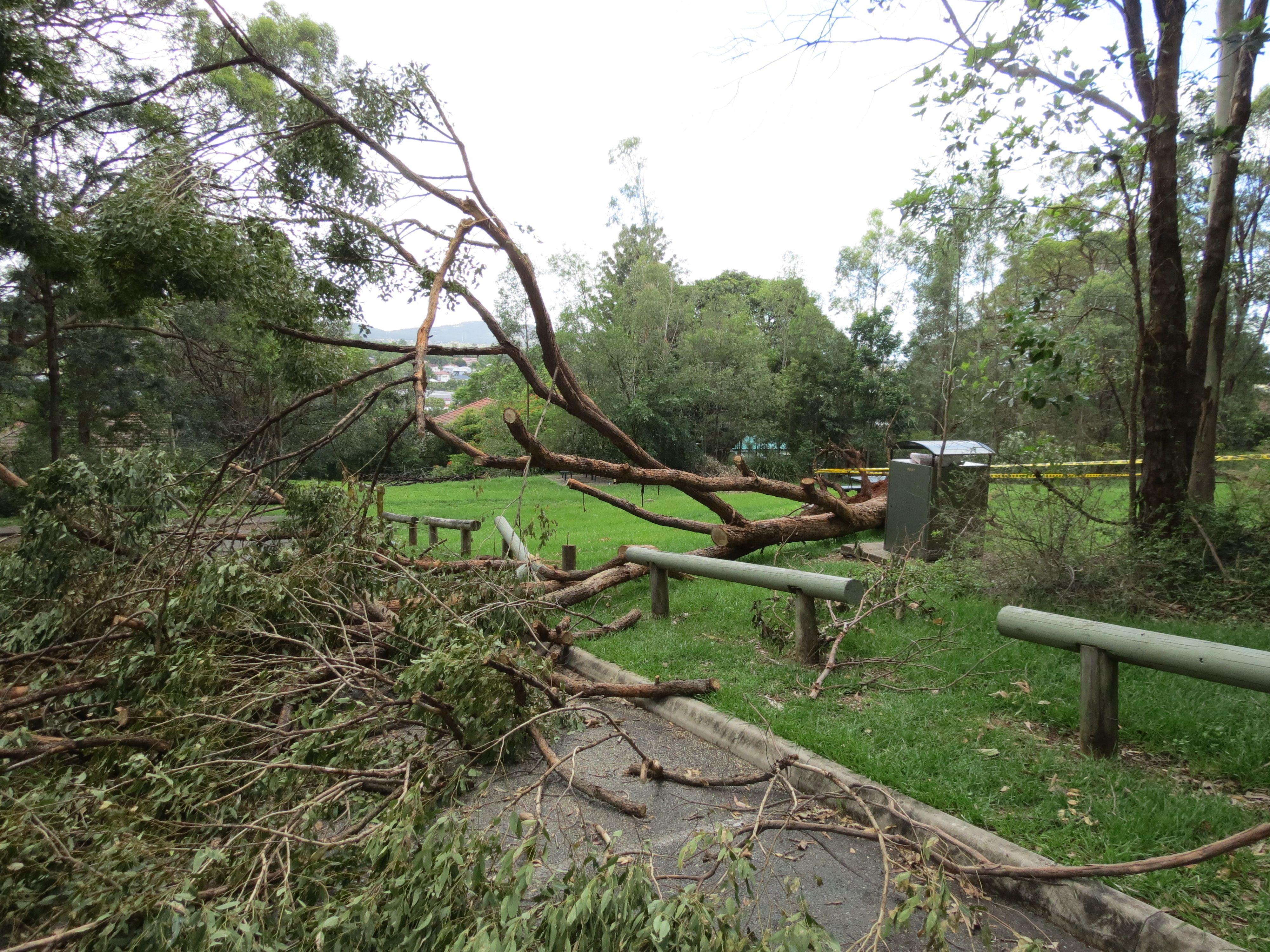 GPP storm damage - 5 Feb 13