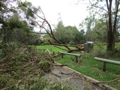 GPP storm damage - 5 Feb 13