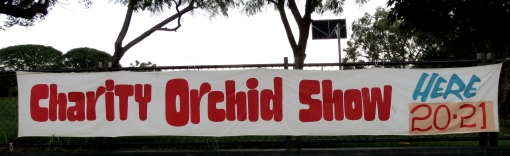 Bris Orchid Society sign - 19 Apr 2013