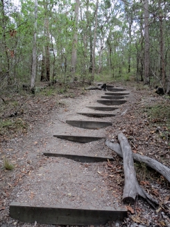 Federation Track steps past Ironbark junction - 10 Feb 2014