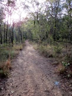 Acacia Way - 23 Mar 14