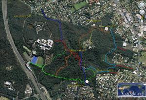 Koala mapping - Mar 2015