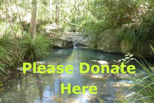 Bulimba Creek Environment Fund
