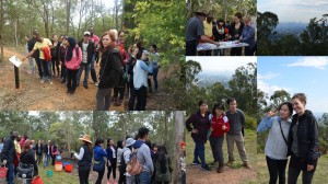 Introducing Griffith students to Australian bush