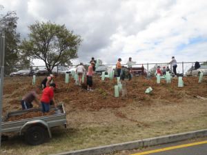Our first community planting day was a resounding success.