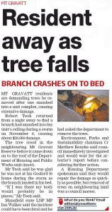 Tree falls - Southern Star - 18 Nov 2015