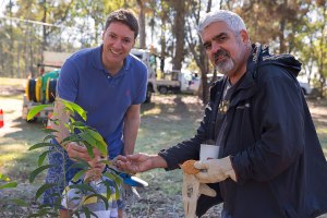Ross Vasta - National Tree Day - Mt Gravatt Conservation Reserve
