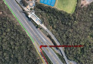 Map - Koala - young male hit by car 3 July 2017