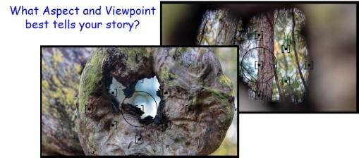 Aspect Viewpoint