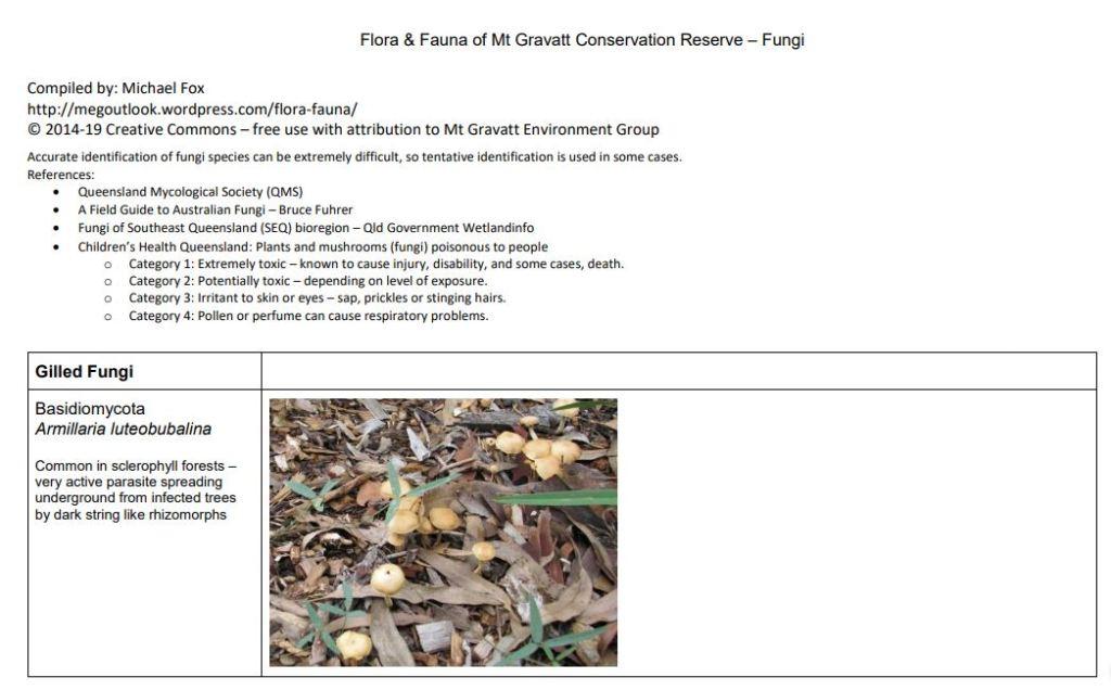 Flora and Fauna - Fungi