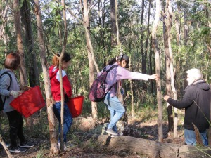 Going bush - 20 July 2019