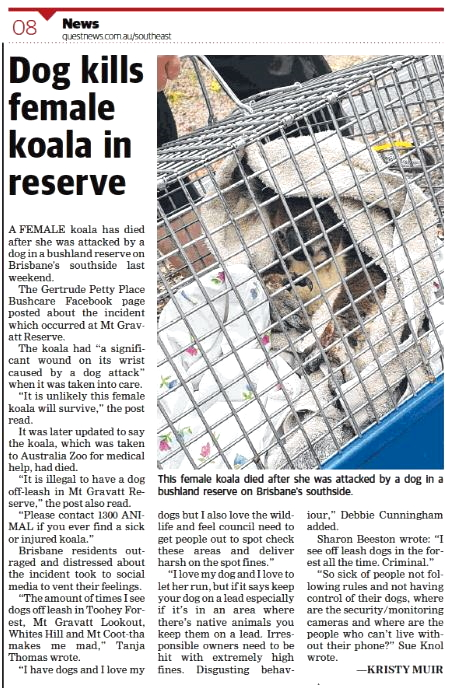 Dog Kills Koala - Feb 2020 adj